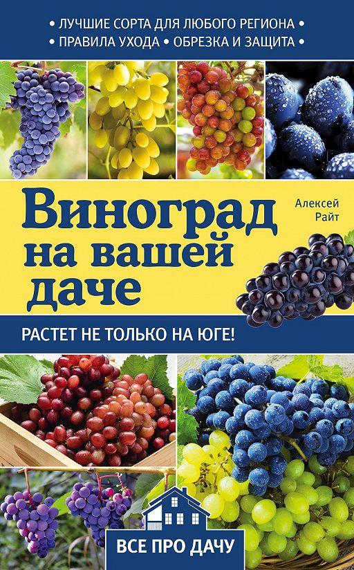 Виноград на вашей даче. Растет не только на юге!