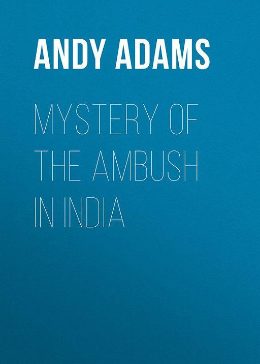 Mystery of the Ambush in India
